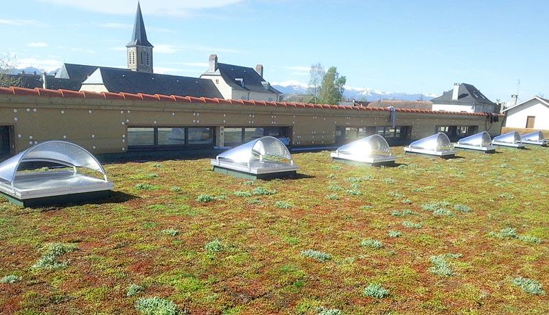 Toit Vegetal Efficass Construction
